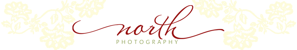 North Photography logo